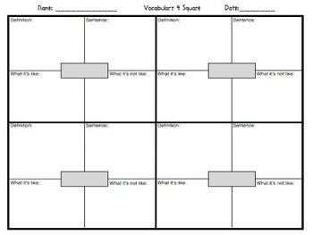 four square graphic organizer pdf