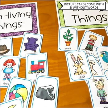 Classify and Sort Common Nouns, Which One Doesn't Belong?