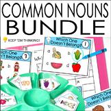 Vocabulary Activities Bundle | Common Nouns | Classify | S