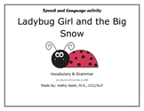 Vocabulary & Grammar - Ladybug Girl and the Big Snow