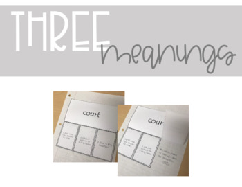 Vocabulary Interactive Notebook - Multiple Meaning Words II