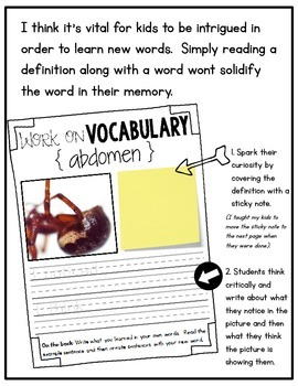 Vocabulary - January