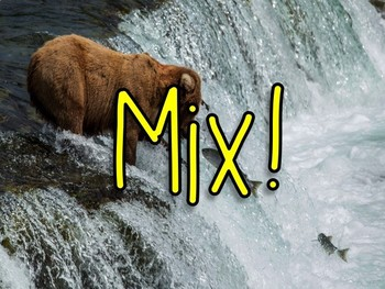 Vocabulary Mix-Pair-Share Game: Two Bear Cubs Journeys 3rd Grade