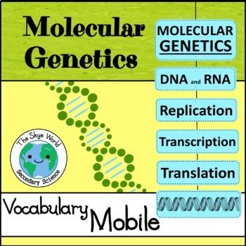 Vocabulary Mobile - Molecular Genetics