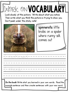 Vocabulary - October
