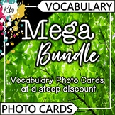Vocabulary Flashcards (Speech Therapy, ESL, SPED, etc.) 24 Themed sets!
