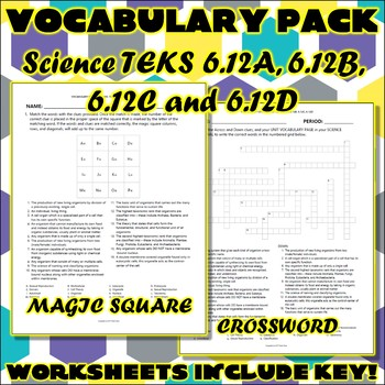 Vocabulary Pack for Sixth Grade Science TEKS Unit 11