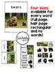 Vocabulary Photo Cards - Bears