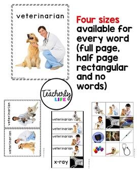 Vocabulary Photo Cards - Veterinarian
