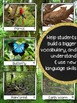 Rainforest Vocabulary Photo Flashcards