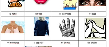 Vocabulary Picture Sheet Body Parts, El Cuerpo