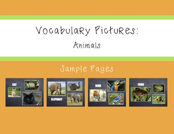 Vocabulary Pictures - Animals