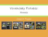 Vocabulary Pictures - Animals