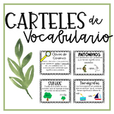 Vocabulary Posters in Spanish