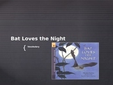 Vocabulary PowerPoint Bat Loves the Night: Journeys Lesson 6