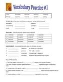 Vocabulary Practice Set - 4 Worksheets