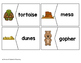 Vocabulary Puzzles: In the Desert Set