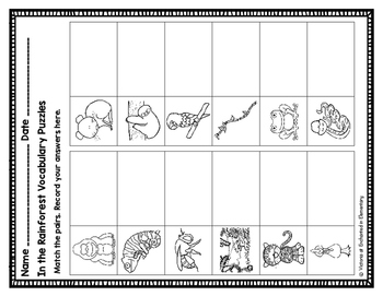 Vocabulary Puzzles: In the Rainforest Set