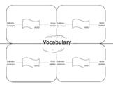 Vocabulary Recording Sheet