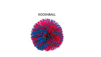 Vocabulary Review Game Kooshball SmartBoard Toss