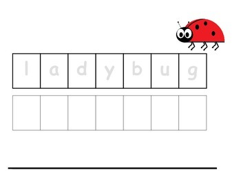 Vocabulary Sheets for Students with Autism - Bugs