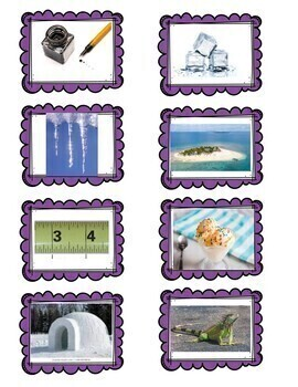 Vocabulary/ Sound Sort Picture Cards
