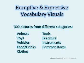 Vocabulary Visuals