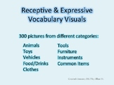 Vocabulary Visuals
