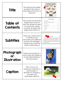 Vocabulary Word Card Sort Bundle (20% OFF!)  All 5 sets included!