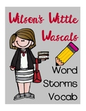 Vocabulary Word Storms