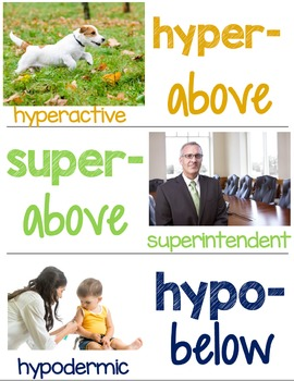 Root, Prefix, & Suffix Word Wall Cards for Greek and Latin Roots Printables