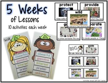 Vocabulary Activities: Big Brain Words Set 2