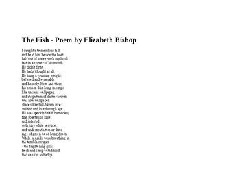 "Vocabulary Worksheet poetry ""The Fish"" by Elizabeth Bishop"