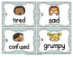 Vocabulary Write the Room: Emotions Set