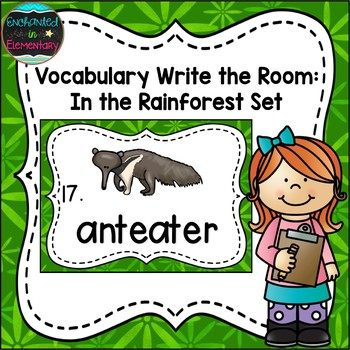 Vocabulary Write the Room: In the Rainforest Set