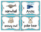 Vocabulary Write the Room: Polar Regions Set