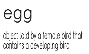 Vocabulary for Life Cycle of a Bird