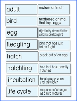 Vocabulary for Life Cycle of a Frog, Bird, Insect, Whale and Cat ♥BUNDLE♥