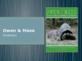 Vocabulary for Owen and Mzee