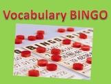 Vocabulary or Spelling Bingo