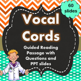 Vocal Cords Guided Reading with Questions and Power Point