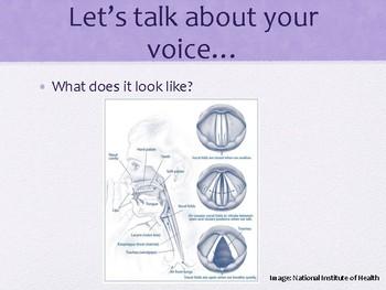 Vocal Hygiene and Abuse Presentation