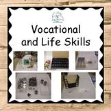 Vocational Life Skills | Vocational Skills | Special Education
