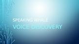 Voice Exploration