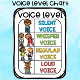 Voice Level Chart / Poster