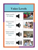 Voice Level Expectations Chart- Orange and Purple