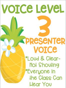 Voice Level Posters Flamingo Tropical Theme Class Management
