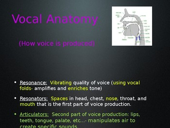 Voice Terms Power Point for Drama Class!