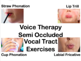Voice Therapy Semi Occluded Vocal Tract Exercises