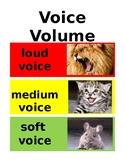 Voice Volume Chart-Preschool